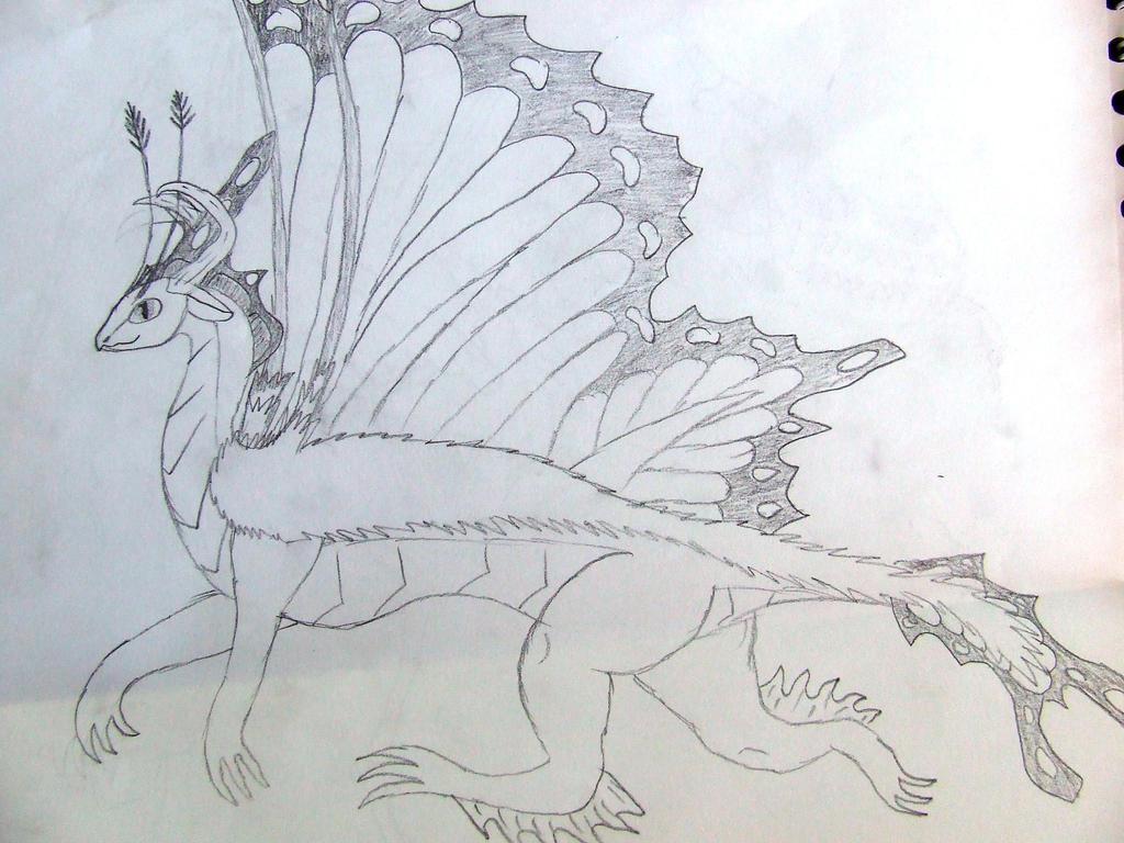Butterfly Dragon by Skarlette8000