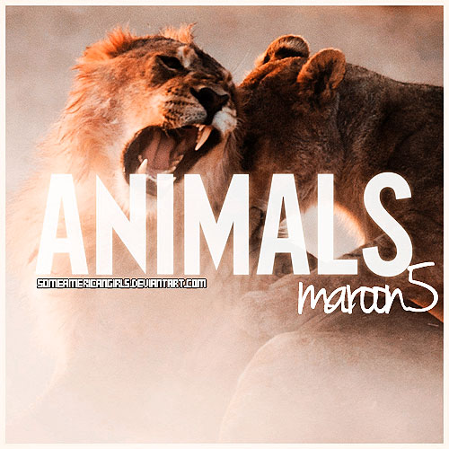 Maroon 5 Magic Mp3 Download: Animals Maroon 5 Mp3 By SomeAmericanGirls On DeviantArt