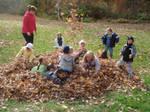 Autumns Children