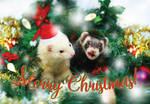 Merry Catsneak Christmas