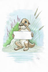 Otter Greeting