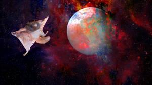 Galaxy Squirrel
