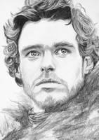 Robb Stark by crysaniasea