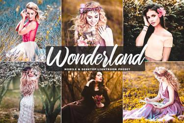 Wonderland Mobile And Desktop Lightroom Preset by symufa