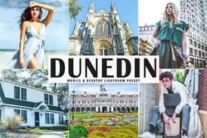 Free Dunedin Mobile And Desktop Lightroom Preset