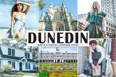 Free Dunedin Mobile And Desktop Lightroom Preset