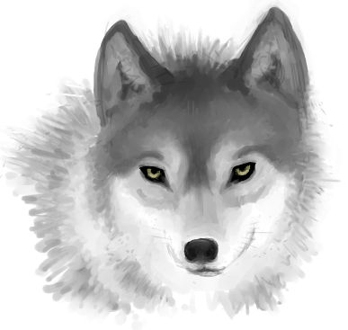 A Wolf Head... and That's It