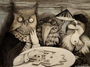 Rapaci_Birds of prey