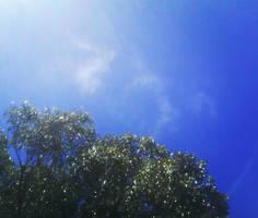 Australia Sky by Dragon-Reaper