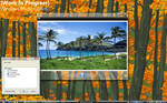 W.I.P. Windows Photo Gallery