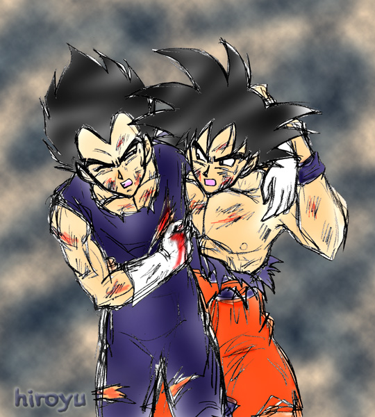 Goku and Vegeta 14 by hiroyu732