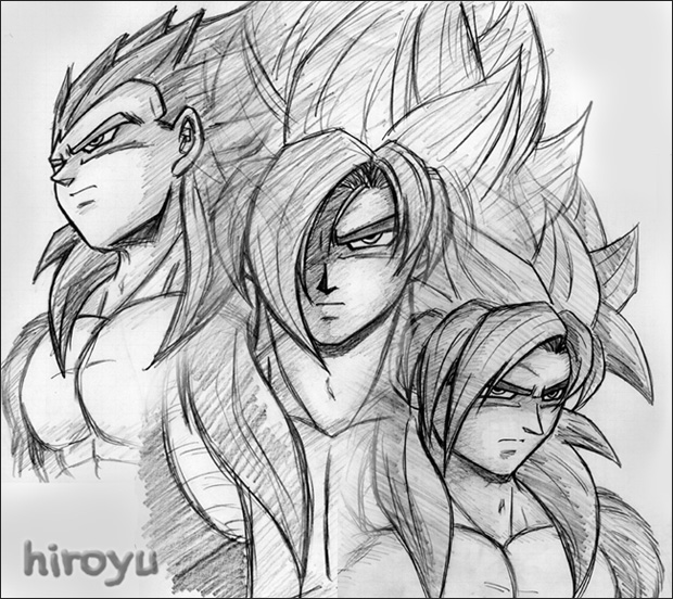 SS4 Warriors 2 by hiroyu732