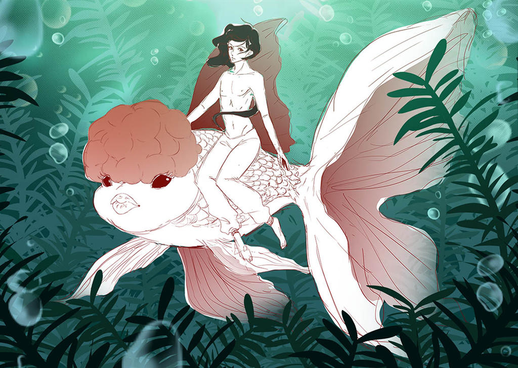 sketch  Goldfish by ciaonaidin