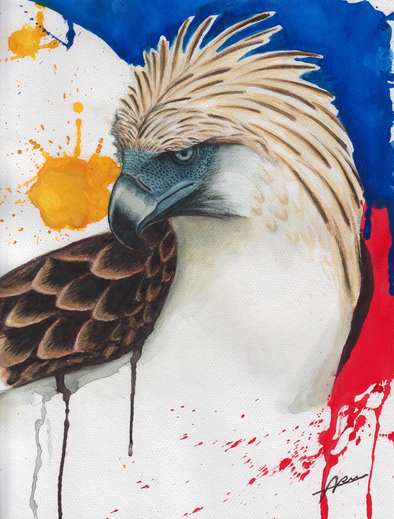 Philippine Eagle (watercolor) by Abremson on DeviantArt