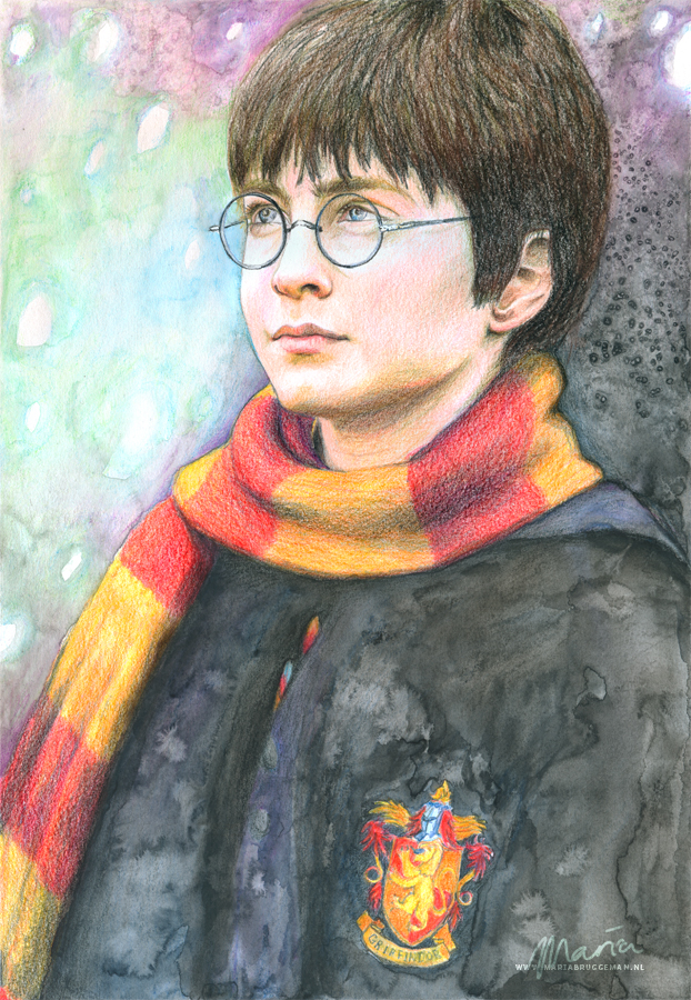 Harry Potter and the Philosophers stone by MariaBruggeman