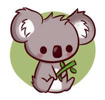 Koalaa