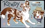C: Rowdy