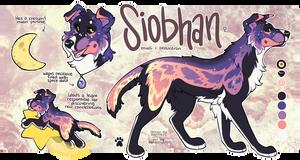 C: Siobhan