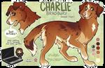 C: Charlie Bradbury