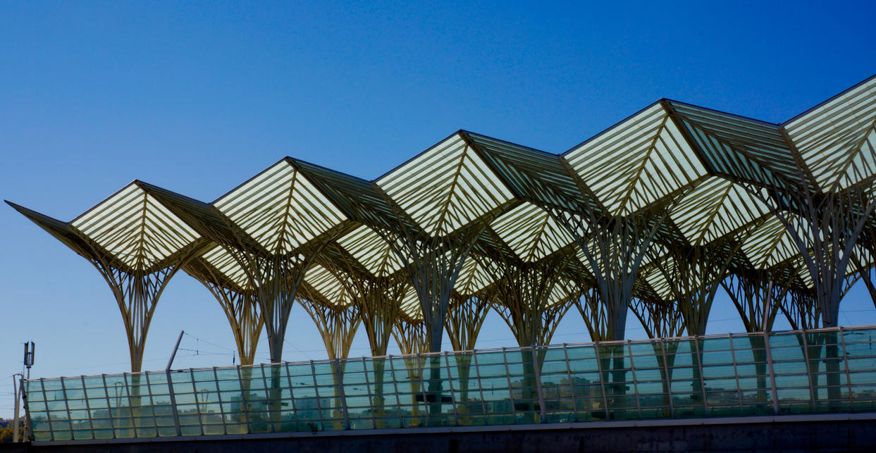 Calatrava Superstar by thecardinaldelaville