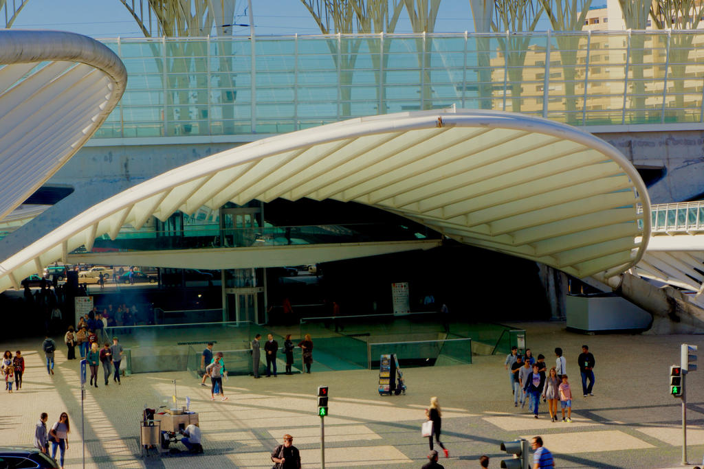 Calatrava  Vol II by thecardinaldelaville