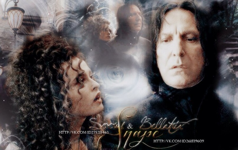 Death Eaters are characters featured in the Harry Potter series of novels and films They are a group of wizards and witches led by the dark wizard Lord Voldemort