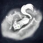 Cat within the Spirits