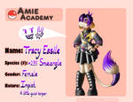 Amie Academy Application