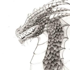 bioeve's Profile Picture