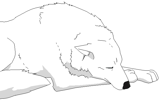 wolf rain coloring pages - photo#31