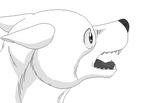 Dog base 6