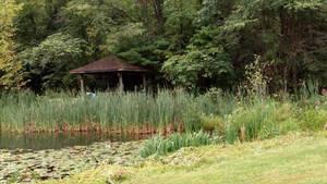 Lake 8 and pavilion