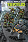 TMNT Animated book #9 cover