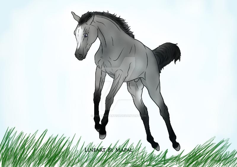 foal of dawn by TheAdoptArtist