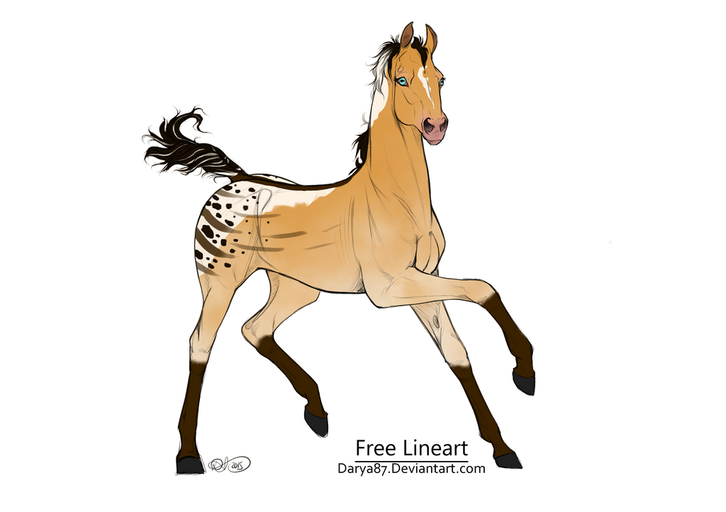 Buckskin Semi Tobiano OTA - CLOSED - by TheAdoptArtist