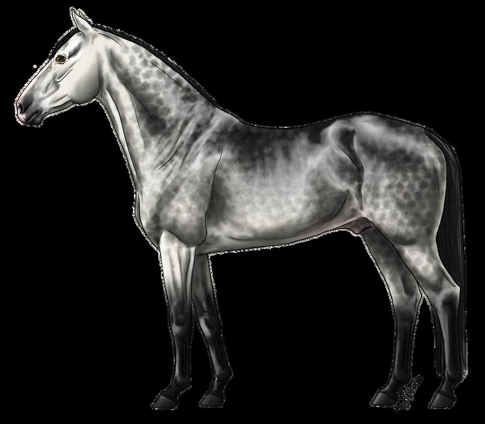 Greyscale Dappled Grey OTA - CLOSED by TheAdoptArtist
