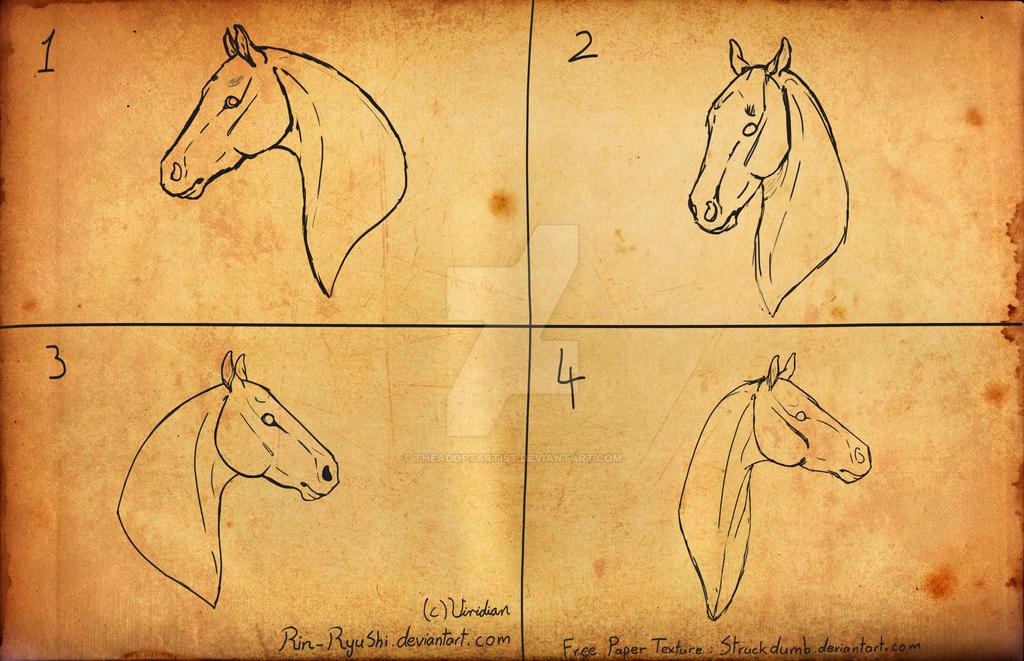 YHH Headshots - Equine Headshots [0/4] CLOSED by TheAdoptArtist