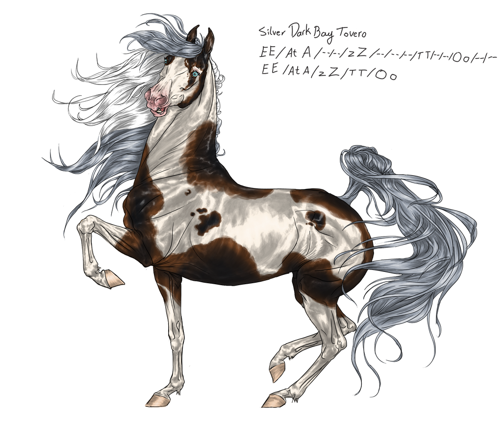 Horse Design Point/Paypal Auction - CLOSED by TheAdoptArtist