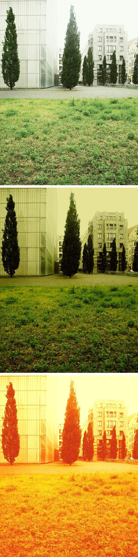 Trees and art museum by untermbettheuer