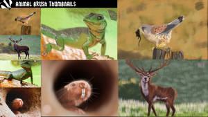 Animal Brush Thumbnails