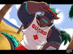 (comm) lifeguard