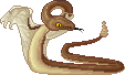 Snake by Infinis