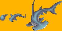 MagiStream: Caerulean Hammerhead by Infinis