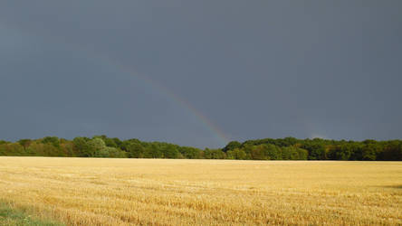 Rainbow field