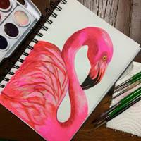 Ready to Flamingle