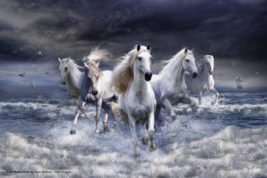 Horses 2 by HJR-Designs