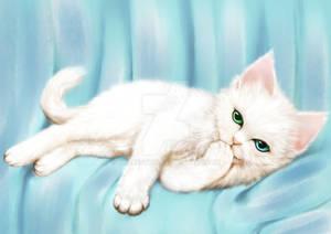 Day 2 -  fav animal: CAT 2