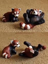 Red Pandas by gescheitert