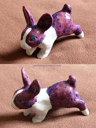 Anemone Rabbit by gescheitert