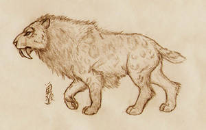 Smilodon populator by Roninwolf1981